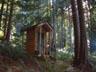 Outhouse - Glen McMillian photo